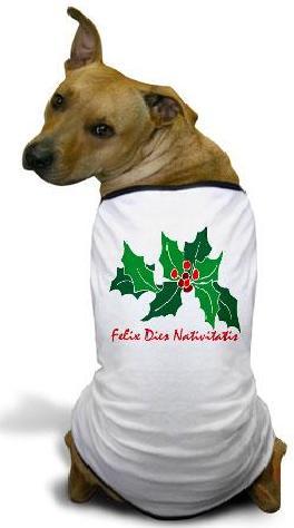 Felix dies Nativitatis.